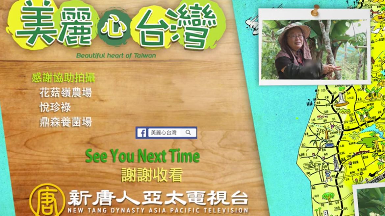 非常感謝新唐人亞太電視台「美麗心台灣」的採訪拍攝