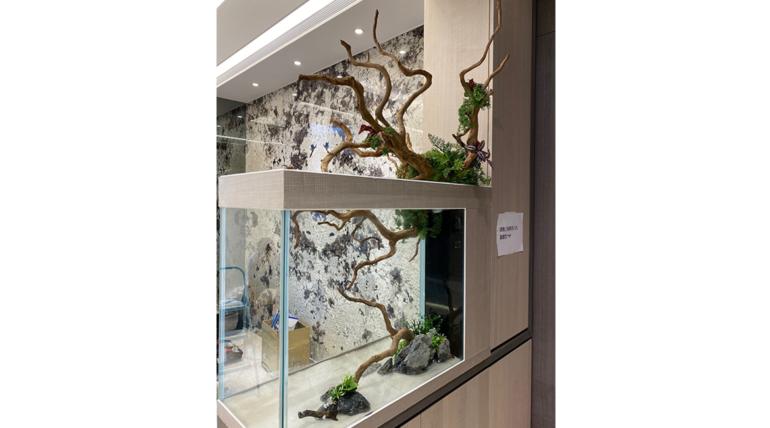 分享位於新莊副都心董ㄟ的玄關七彩造景缸:一條龍服務