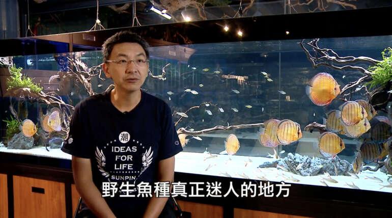 《美麗心台灣》令人驚豔的野彩(上)預告